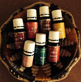 Well traveled oils that went to the Amazon and back.