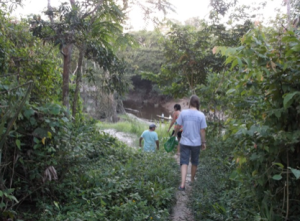 Trail to the river in Amazonas.